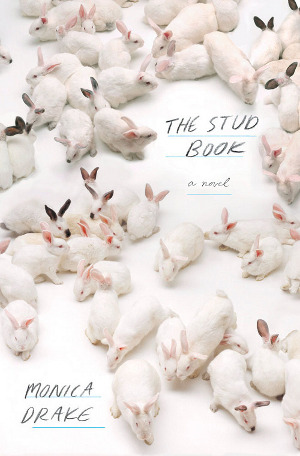 0413-the-stud-book