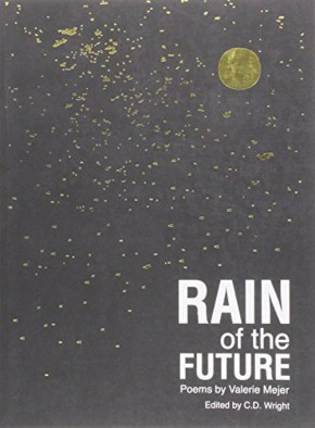 Rain of the Future, by ValerieMejer