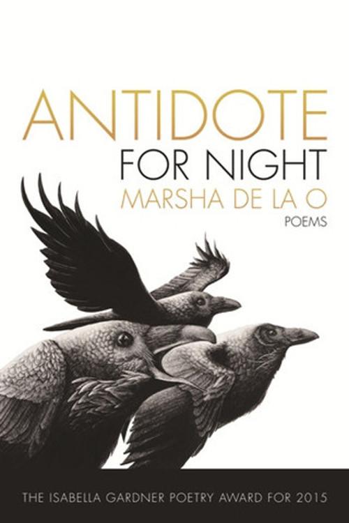 antidotefornight_bookstore_large