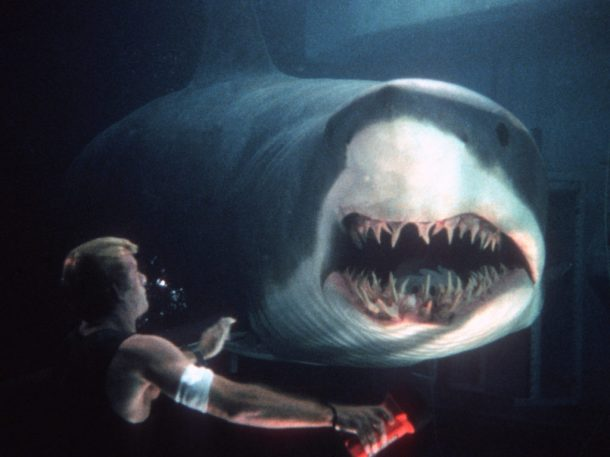 sharkta-dxnre3-1024x768