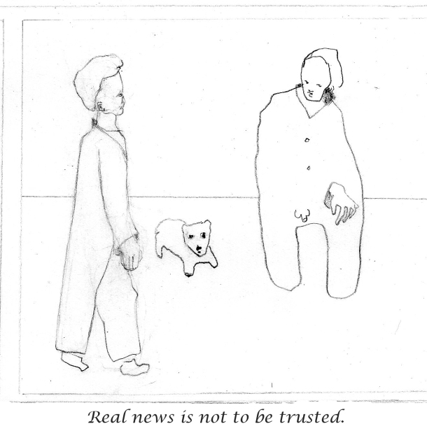 real-news-is-not-to-be-trusted